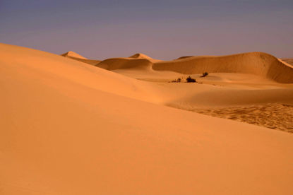 Picture of Desert Adventure